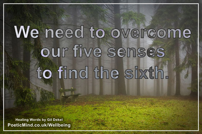 The Five Senses... (Gil Dekel Healing Words)