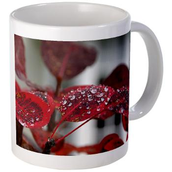 dew on red leaves - mug