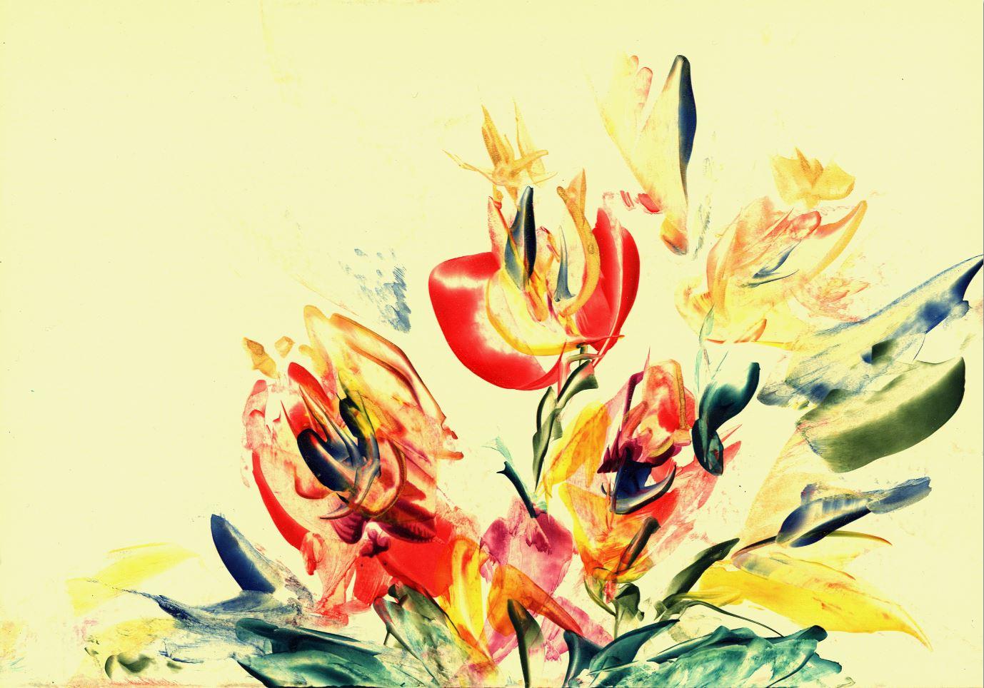 Flowers on peach (Natalie Dekel, Oct 2009)