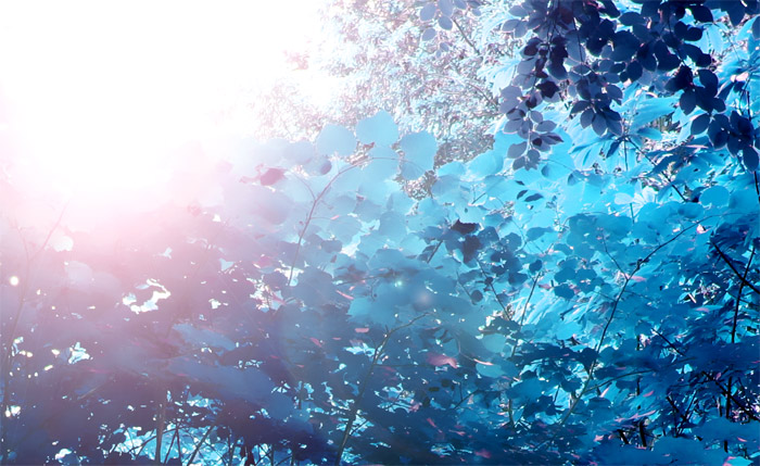 Towards-Dreaming-Light - Gil-Dekel