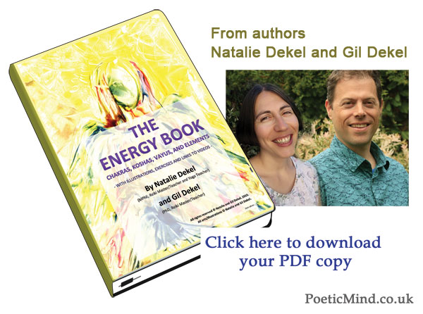 The Energy book: Restoring your sense of wellbeing and health