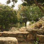 Yehiam Fortress, Israel. (Photo: Gil Dekel 2019)