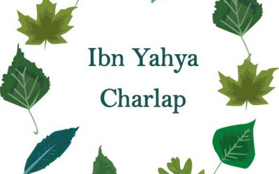 Origins of Yahya, Charlap, and subsequent family branches