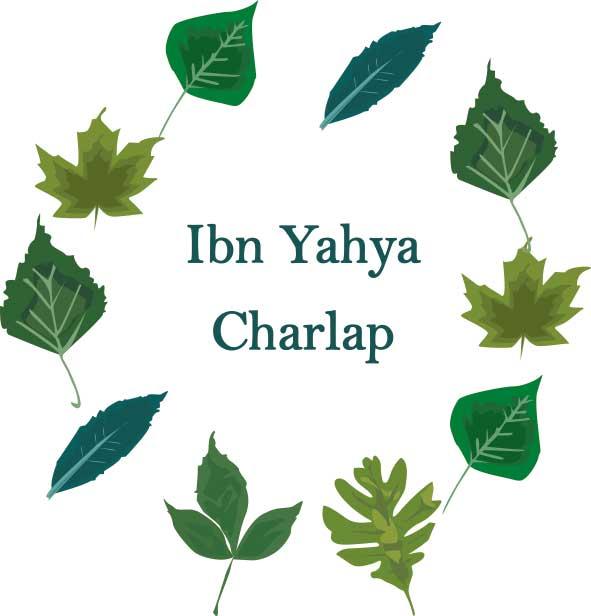 Ibn Yahya Charlap leaves